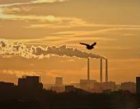 Fumo tossico nero dagli stabilimenti chimici Fotografia Stock Libera da Diritti