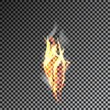 Fumo trasparente su fondo scuro Vettore 10eps Immagine Stock Libera da Diritti