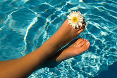 Fun. Women's feet in the water pool flowers Stock Photography