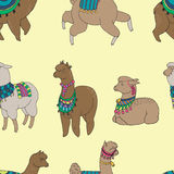 Fun alpaka and lama in festive decorations seamless  pattern. Cute design Royalty Free Stock Image
