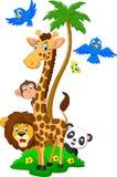 Fun animal herds cartoon Royalty Free Stock Image