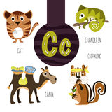 Fun animal letters of the alphabet for the development and learning of preschool children. Set of cute forest, domestic and marine Royalty Free Stock Photos