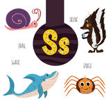 Fun animal letters of the alphabet for the development and learning of preschool children. Set of cute forest, domestic and marine. Animals with the letter s Royalty Free Stock Photos