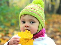Fun baby in hat with maple leaf on royalty free stock photography