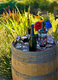 Fun backyard party. Drinks prepared in a backyard at the barrel decorated as a serving table Stock Photos