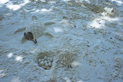 Fun beach sand turtle egg. Fun on the beach with turtle and egg sand sculpture stock photo