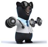 Fun bear Stock Images