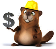 Fun beaver Stock Photos