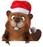 Fun beaver Royalty Free Stock Image
