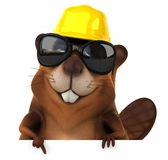 Fun beaver Royalty Free Stock Photos