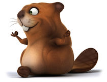 Fun beaver Stock Images