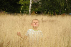 Fun in bent grass. Young boy, young child, having fun in yellow bent grass on a meadow royalty free stock photography
