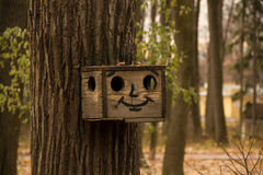 Fun birdhouse on the tree. Birdhouse with a cheerful painted face hanging on the tree stock photos