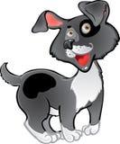 Fun black dog stock images