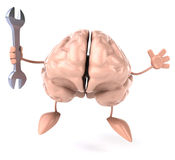 Fun brain Stock Photography