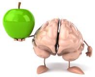 Fun brain Stock Photos