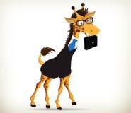 Fun Business Giraffe Stock Image