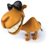 Fun camel. Illustration, 3d generated picture Royalty Free Stock Photos