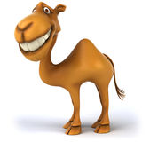 Fun camel. Illustration, 3d generated picture Royalty Free Stock Photography