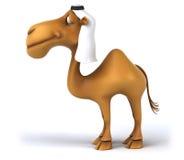 Fun camel Stock Photo