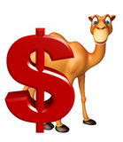 Fun Camel cartoon character with doller sign Royalty Free Stock Images