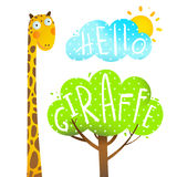 Fun Cartoon African Giraffe Animal with lettering hello. Stock Image