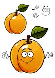 Fun cartoon apricot fruit character Royalty Free Stock Photo