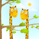 Fun Cartoon Baby Giraffe Animals in Wild for Kids Drawing Stock Photo