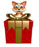Fun cat cartoon character with gift box Royalty Free Stock Image