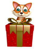 Fun cat cartoon character with gift box Stock Images