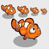 Fun clown fish with big eyes, icon for your design. Funny clown fish with big eyes, icon for your design needs Royalty Free Stock Photography