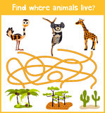 Fun and colorful puzzle game for children's development find where a deer, striped Chipmunk and fish. Training mazes for preschool Royalty Free Stock Photography