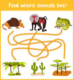 Fun and colorful puzzle game for children's development find where a deer, striped Chipmunk and fish. Training mazes for preschool Royalty Free Stock Image