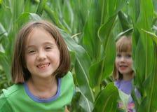 Fun in the corn field. 2 girls playing in a corn field Stock Photos