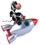 Fun cow Stock Photos