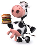 Fun cow Stock Images