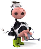 Fun cow Stock Photo