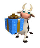 Fun Cow cartoon character with gift box Royalty Free Stock Photo