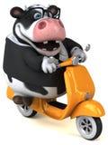Fun cow - 3D Illustration royalty free illustration