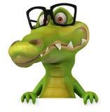 Fun crocodile Stock Photo