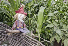 Fun decorative scarecrow sitting on a rustic fence Stock Images