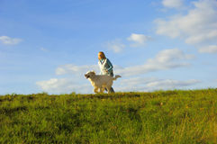 Fun with dog. Woman running and playing with her dog golden retriever in nature stock photography
