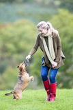 Fun dog walk. Young woman playing with her pet dog with a stick royalty free stock photos