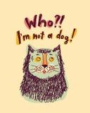 Fun doodles color cat portrait joke Royalty Free Stock Photo
