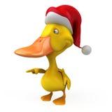 Fun duck Stock Image
