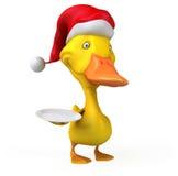 Fun duck Royalty Free Stock Photos