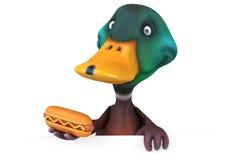 Fun duck Royalty Free Stock Image