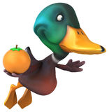 Fun duck Royalty Free Stock Images
