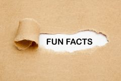 Fun Facts Torn Paper Concept royalty free stock photos