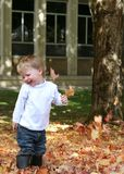 Fun fall leaves. Small child has fun playing in fall leaves; childhood; autumn royalty free stock photography